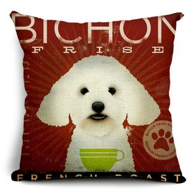 bichon2